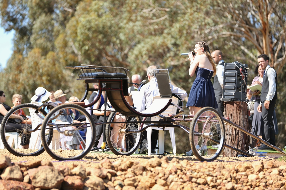 Horse Cart at Ceremony Site