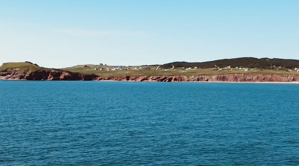 Looking from the Akademik Ioffe offshore in Cabot Cove.