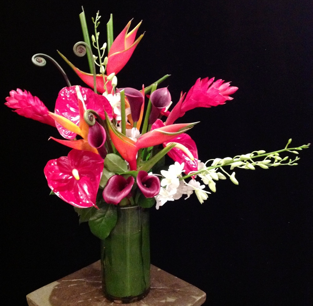 Tropicals with Red Anthuriums, Eggplant Calla Lilies, 'Monkey Tail Fern' & White Dendrobiums