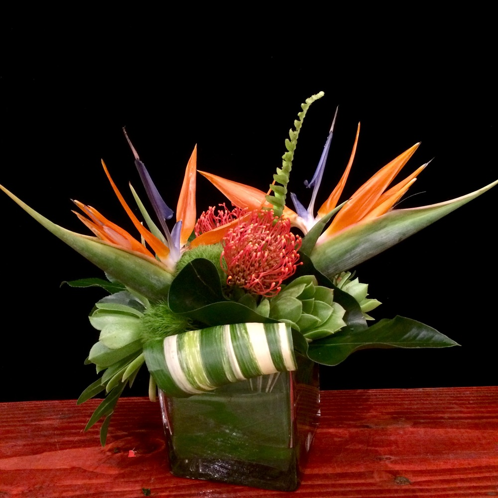 Birds of Paradise, Orange Pincushion, Green Succulents, Dianthus