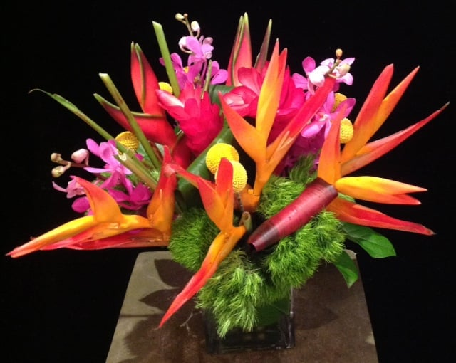 Parakeet Heliconia, Red Ginger, Dianthus, Billy Button, Hot Pink Vanda Orchids