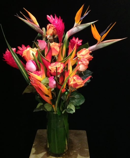 Tropicals, Birds of Paradise, A Dozen Mix Roses