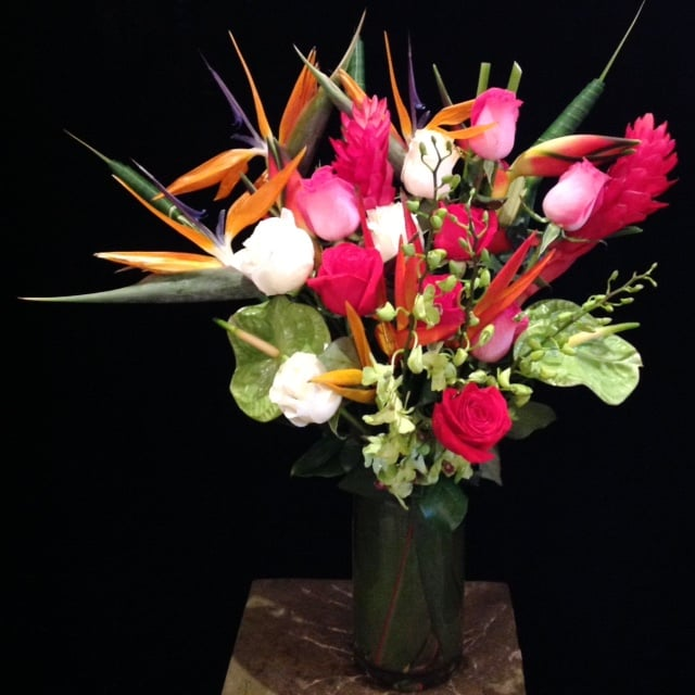 Tropicals, Birds of Paradise, Green Anthurium, A Dozen Roses, & Dendrodium Orchids