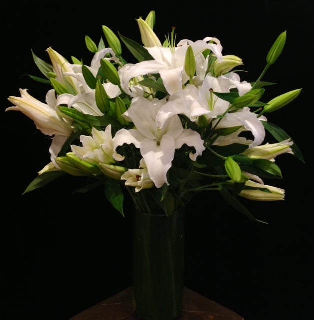 Two Dozen White Lilies