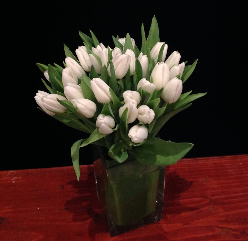 White Tulips (30stems)