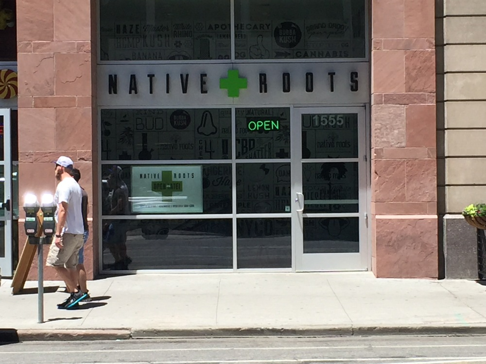 NativeRoots.jpg