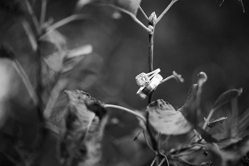 chelsea-8.jpg