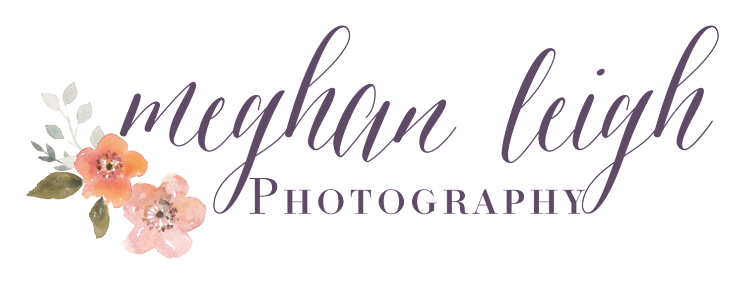 New Jersey Wedding Photographer | Meghan Leigh Photography