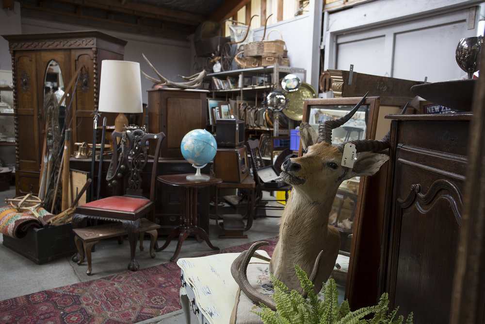 Fern, deer, and the world, just many of the bits and pieces you will find in this wonderful store.