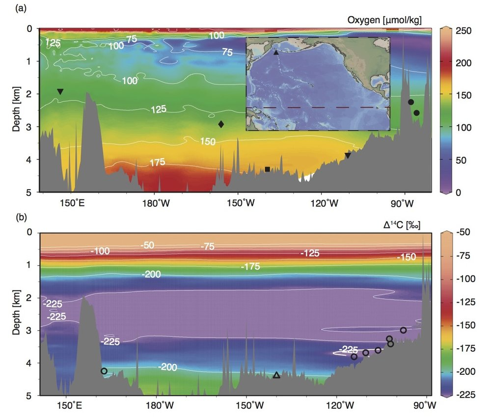 Maps of study area . Modern oxygen concentrations in μmol/kg with the locations of Pacific records of bottom water oxygen as recorded by aU from ML1208-17PC (this study) (diamond), RC11-238 and RC13-140 (dots), TT013-PC7237 (square), ODP 849 and MD97-2138 (inverted triangles)  (a) . The lower panel shows modern Δ14C-concentrations with radiocarbon from TTN013-18 (open triangle), and GS7202-15, PLDS 7G, VNTR01 10 GC, KNR73 3PC, KNR73 4PC, KNR73 6PG and S67 15FFC (open circles). Basemaps made using Ocean Data View.