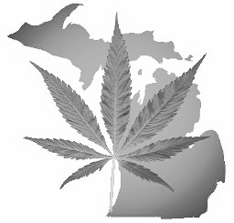 7-Rules-You-Must-Know-About-Michigan-Medical-Marijuana.jpg