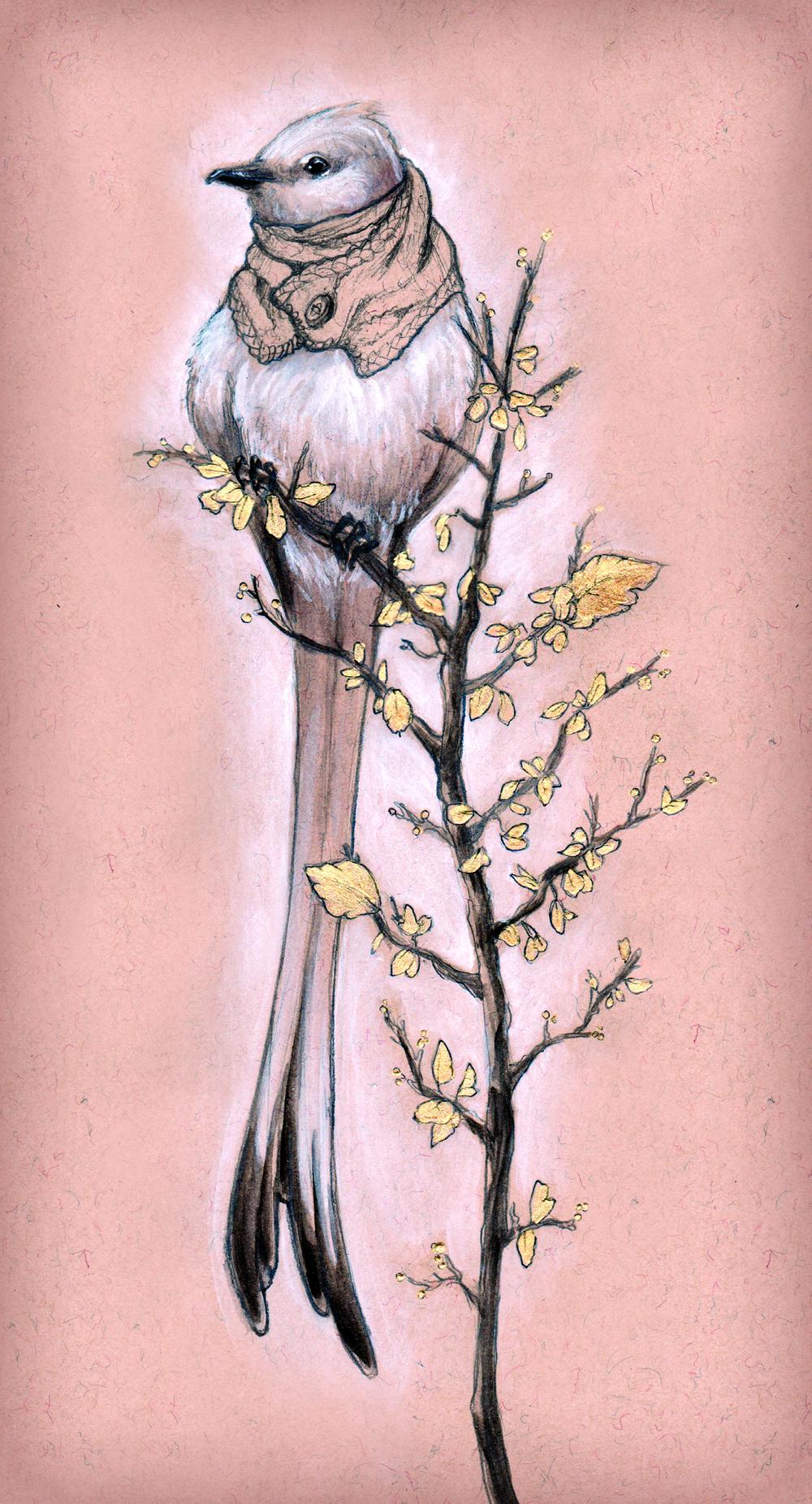 longbird.jpg