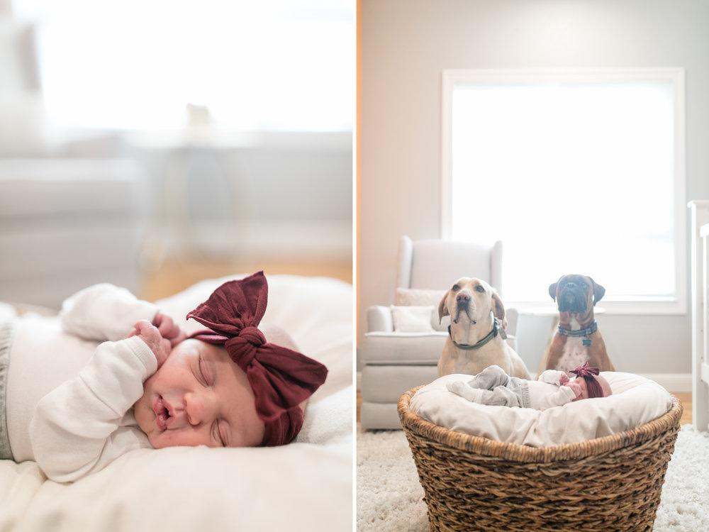 2018_portraits_maier_newborn_blog-20.jpg