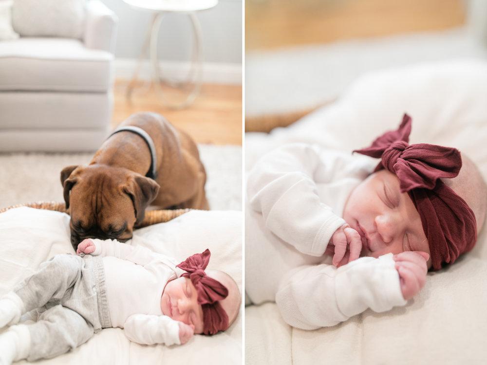 2018_portraits_maier_newborn_blog-22.jpg