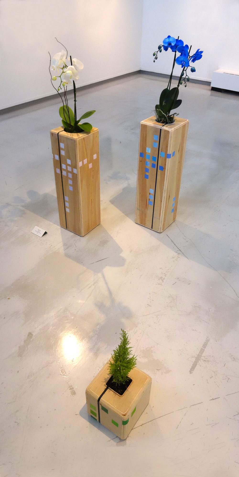 """Requiem""  wood, orchids,tree  2015"