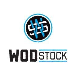 WS Logo BLUE.jpg