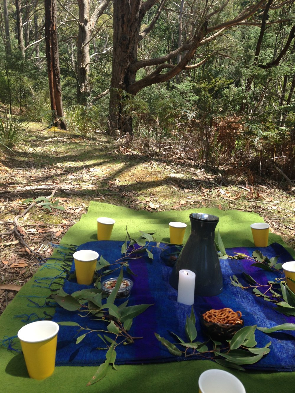 tea ceremony forest bathing.JPG