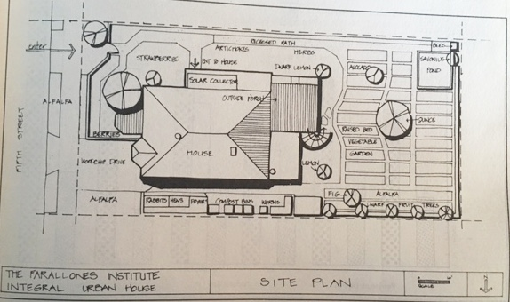Site plan showing maximization of space and alternative solutions to site design.