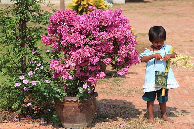 Thailand, 2010  #travel #travelphotography #photo #photooftheday #photograph #photography #photographer #photographerslife #girl #plant #flower #pink
