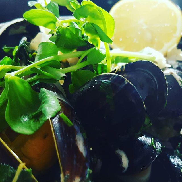 Mussels special #pernod #fennel #whitewine #parsley #lemon #fish #mussels #pickoftheday #foodporn #foodgasm #love #fresh #enfield #winchmorehill #publife #plateart #pubgrub #instafoodie #instadaily #london