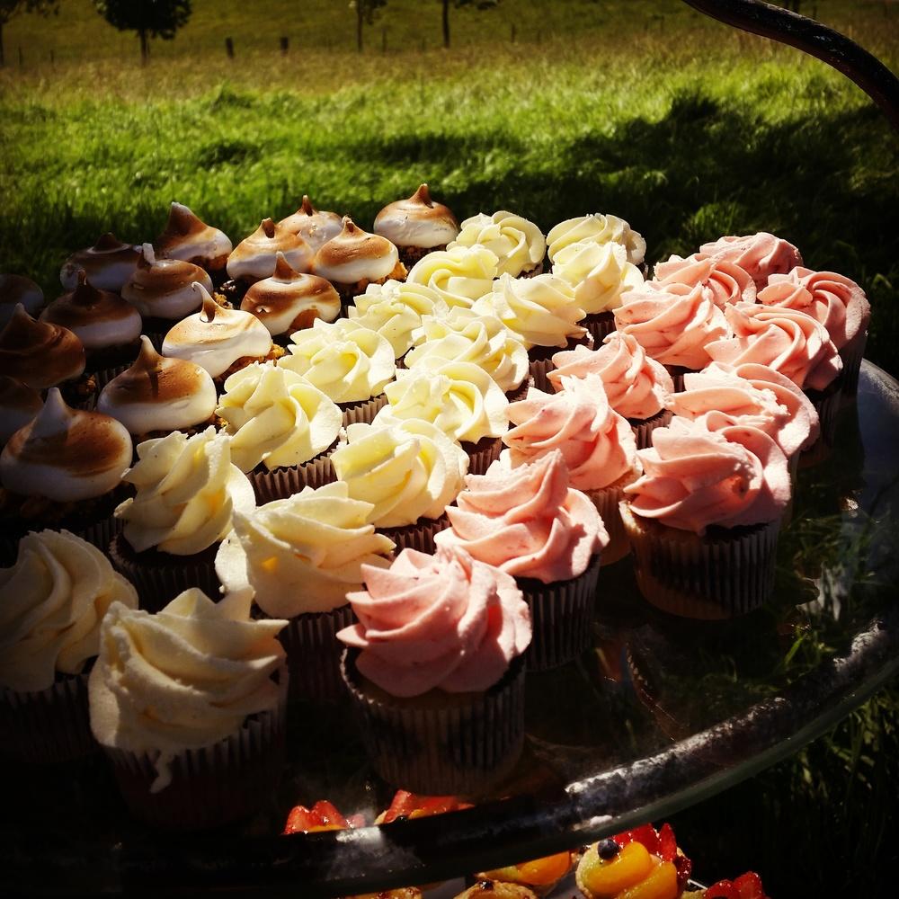 Michelle Cupcakes.jpg