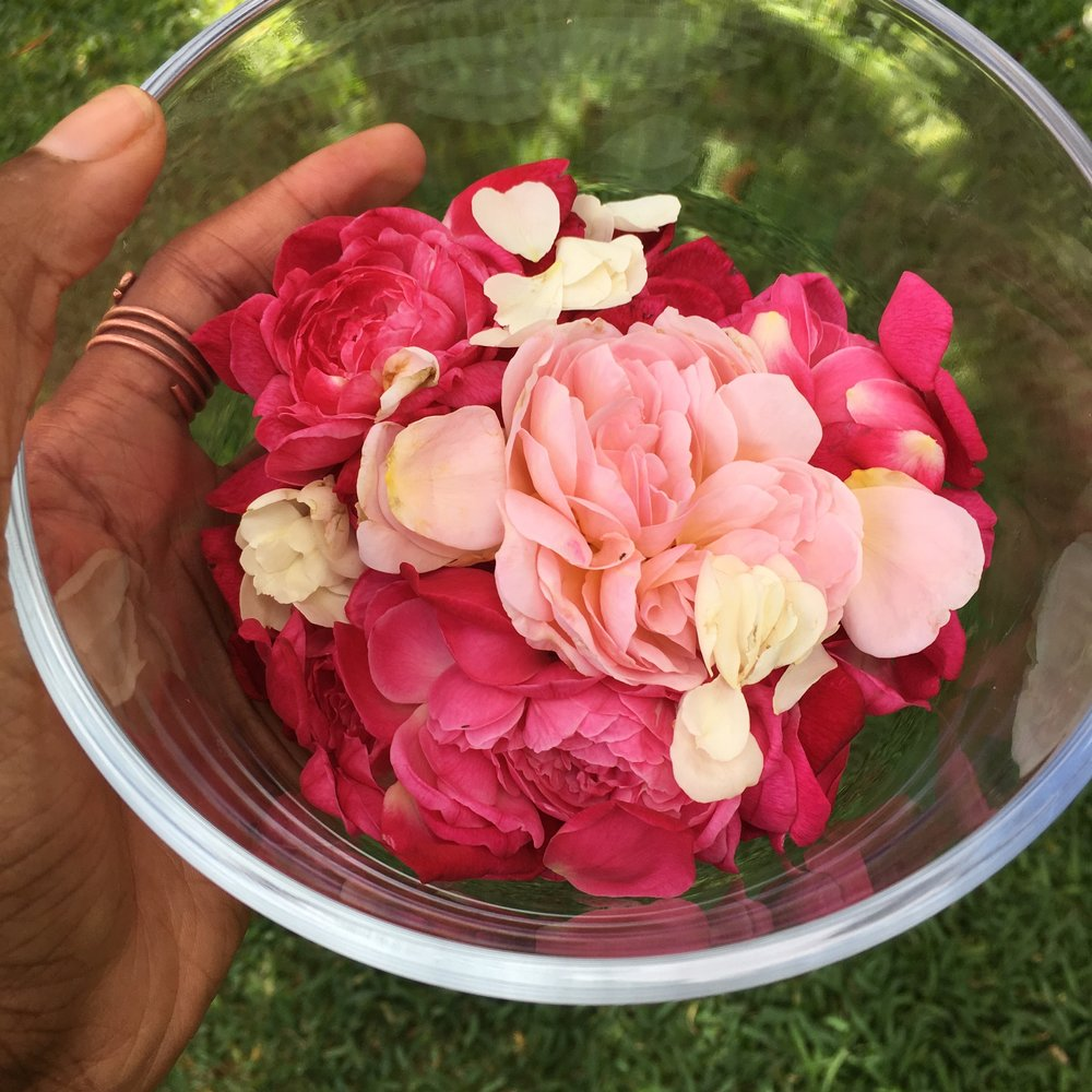 DIY ROSE WATER -