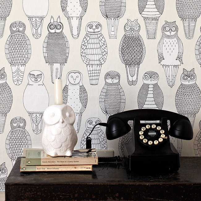 British Isles Owls, Abigail Edwards...Again with the eyes!