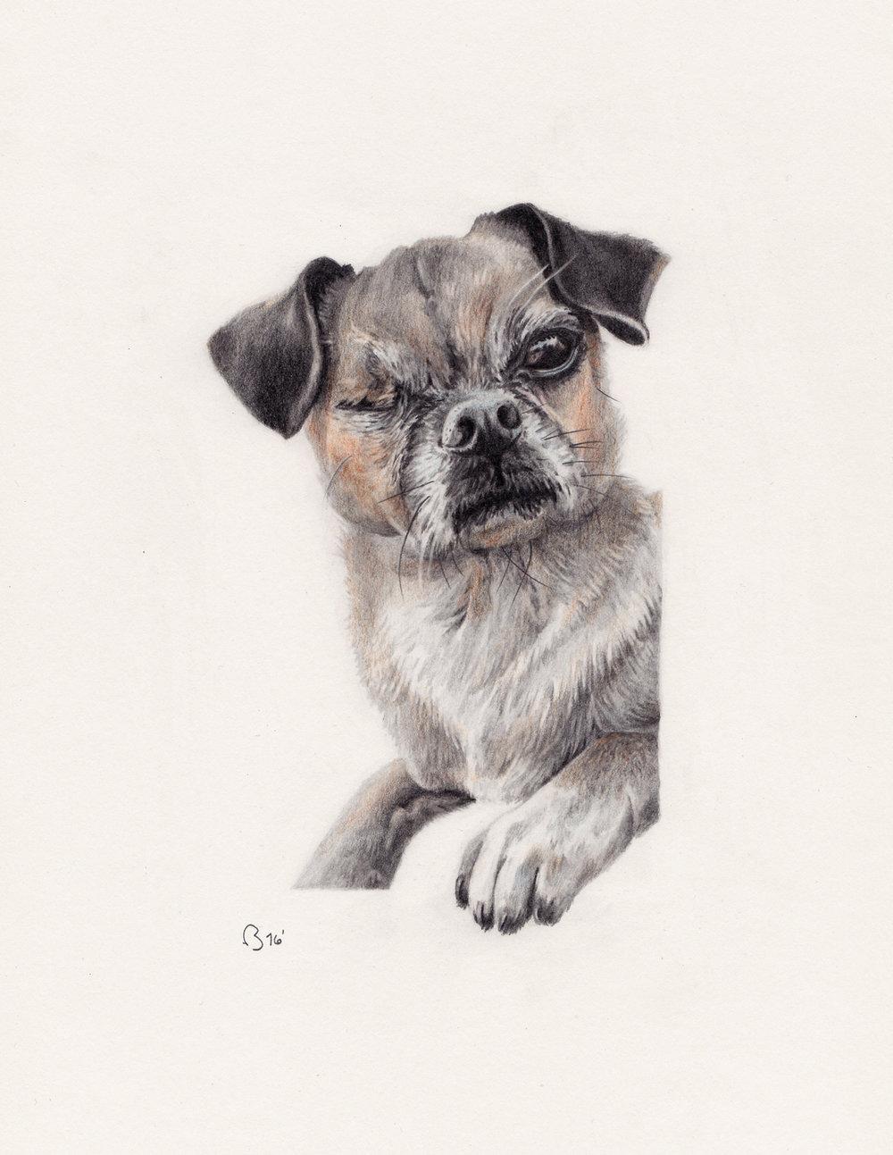 A4 portrait of Leela