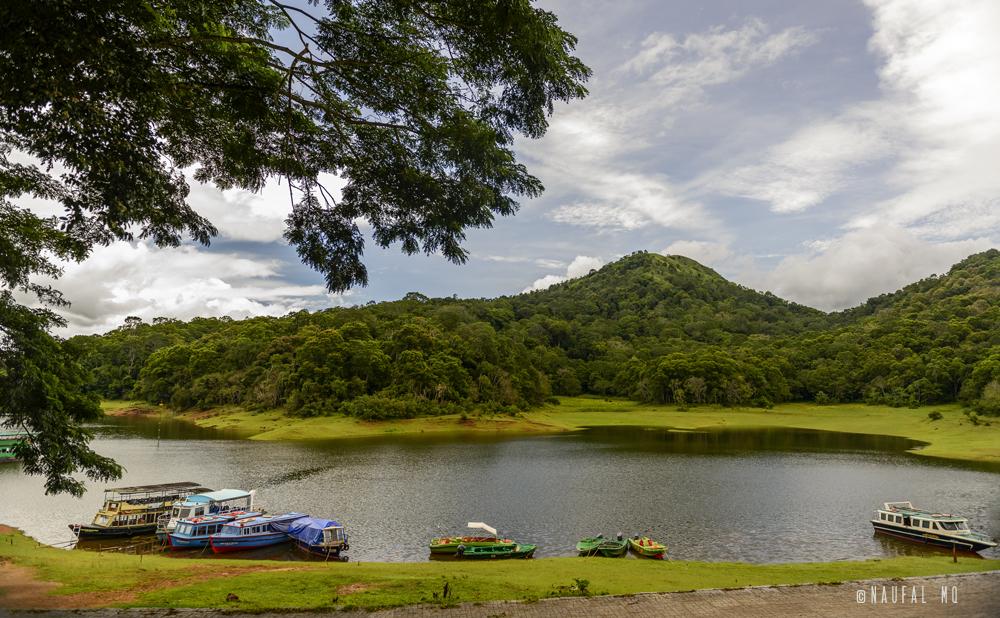 Periyar reservoir, Thekkady, Kerala