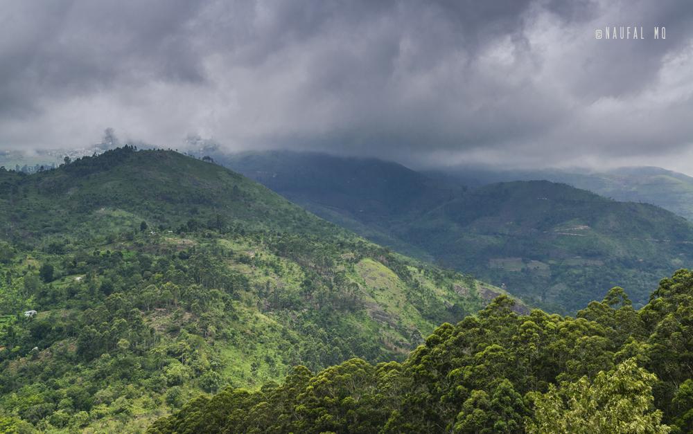 Pazhani Hills
