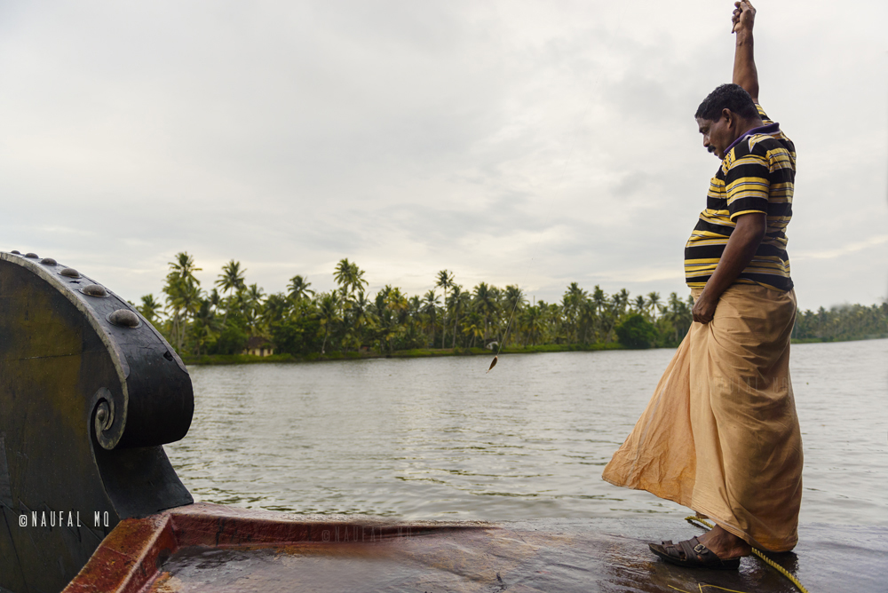 Fishing in the backwaters, Kumarakom, Kerala