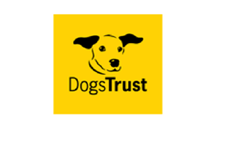 Dita is fully insured with Dogs Trust -