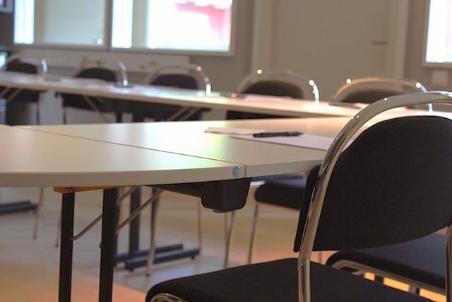 Conference Skånela.jpg