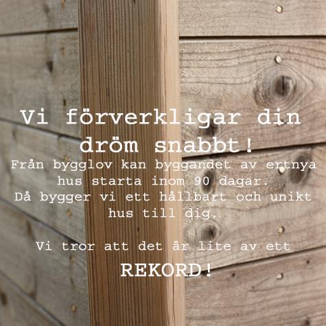 15060_LEVA-dag50213.jpg