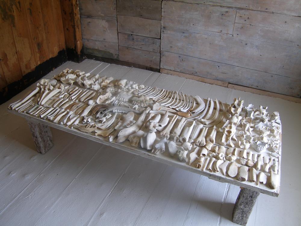 bones1.jpg