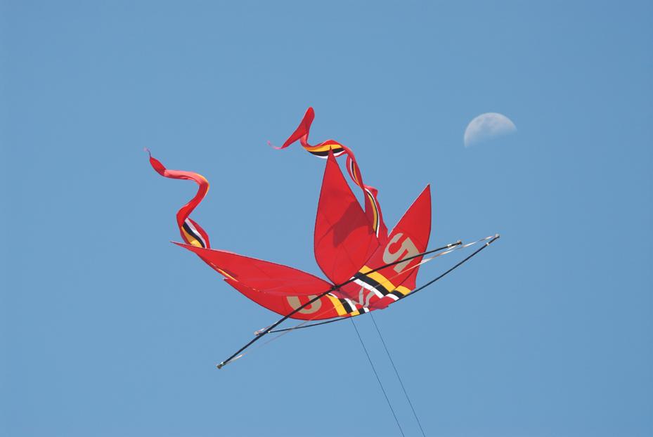 Bali Kite. Indonesia 2007 © Kalman N. Muller