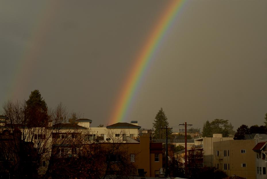 Oakland Rainbow. California 2013 © Kalman N. Muller