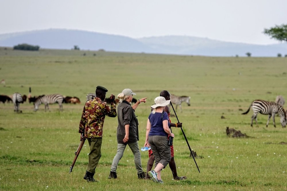 At Don Young's Newland Tarlton camp in the Maasai Mara, I was able to do a walk through herds of game accompanied by a Maasai tracker and an armed Park Ranger.