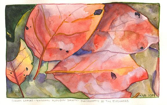 leaves2kgb15