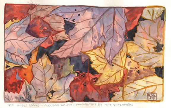 leaves4kgb15