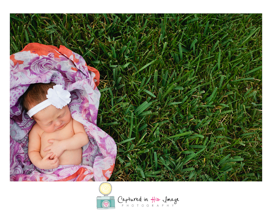 Tampa Bay Lifestyle Newborn Portraits (11 of 13)