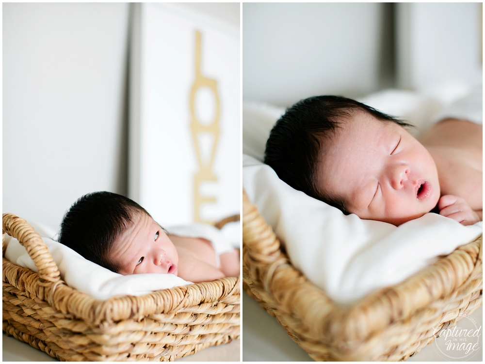 Tampa Bay Lifestyle White and Gold Newborn Portraits_0755