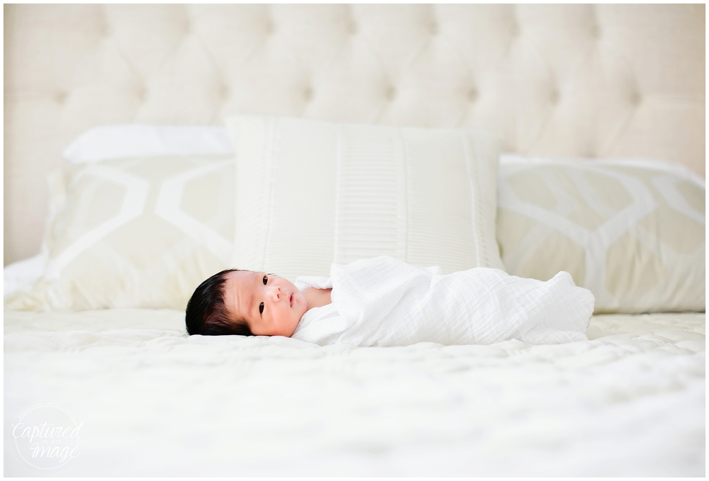 Tampa Bay Lifestyle White and Gold Newborn Portraits_0765