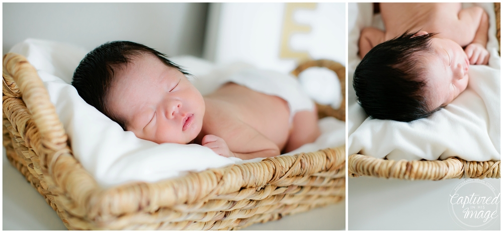 Tampa Bay Lifestyle White and Gold Newborn Portraits_0781