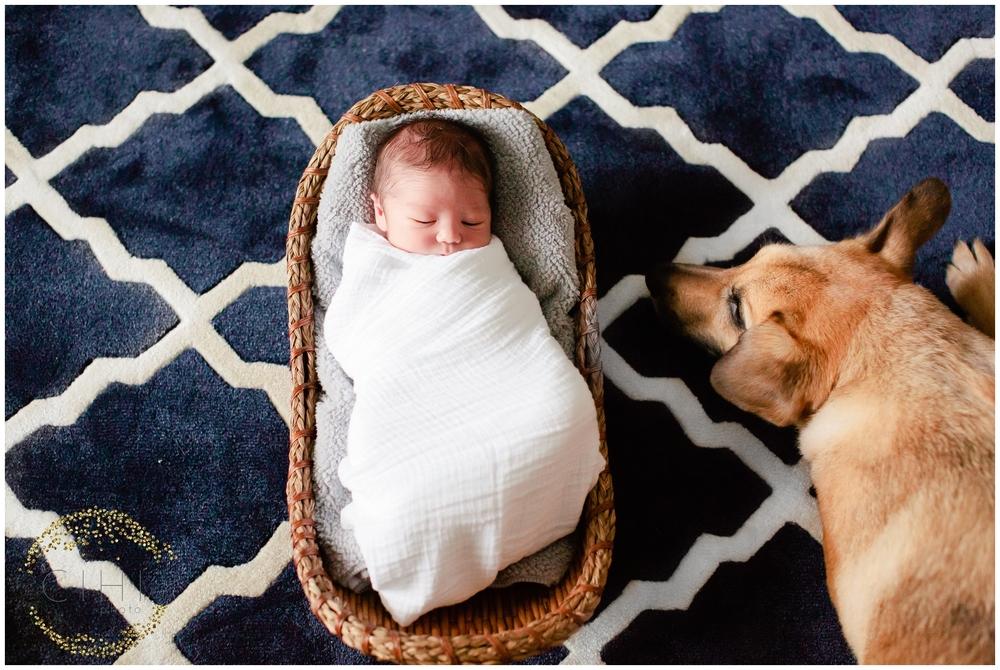Sarasota December Newbory Baby Boy_2151.jpg