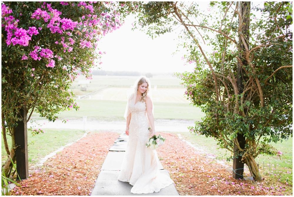 Barrington Hill Farm Tampa Florida December Wedding_0039.jpg