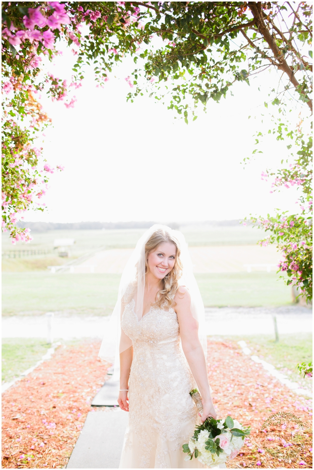 Barrington Hill Farm Tampa Florida December Wedding_0040.jpg
