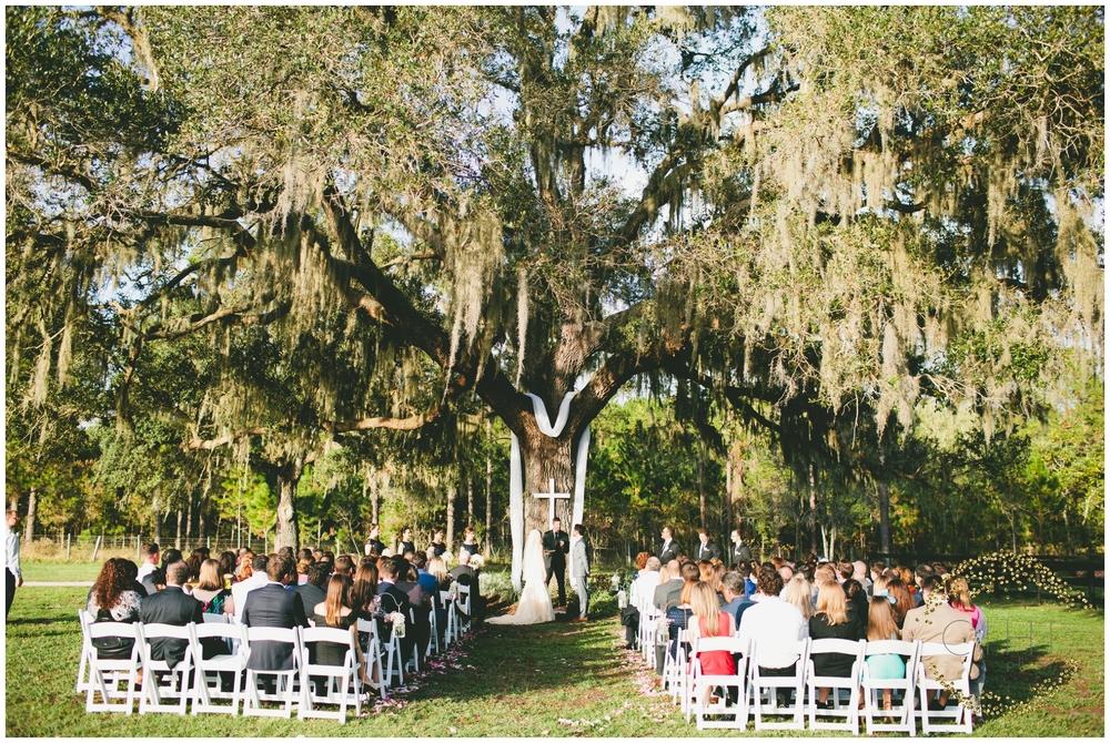 Barrington Hill Farm Tampa Florida December Wedding_0062.jpg