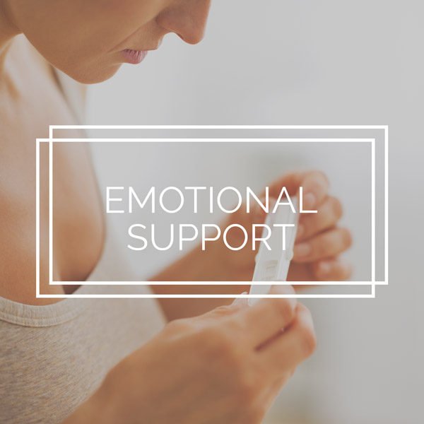 Emotional-Support.jpg