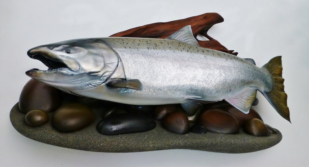 King Salmon fish replica art sculpture painted by Luke Filmer of Blackwater Fish Replicas